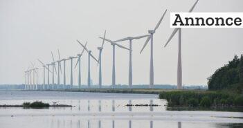 windmills-391691_640